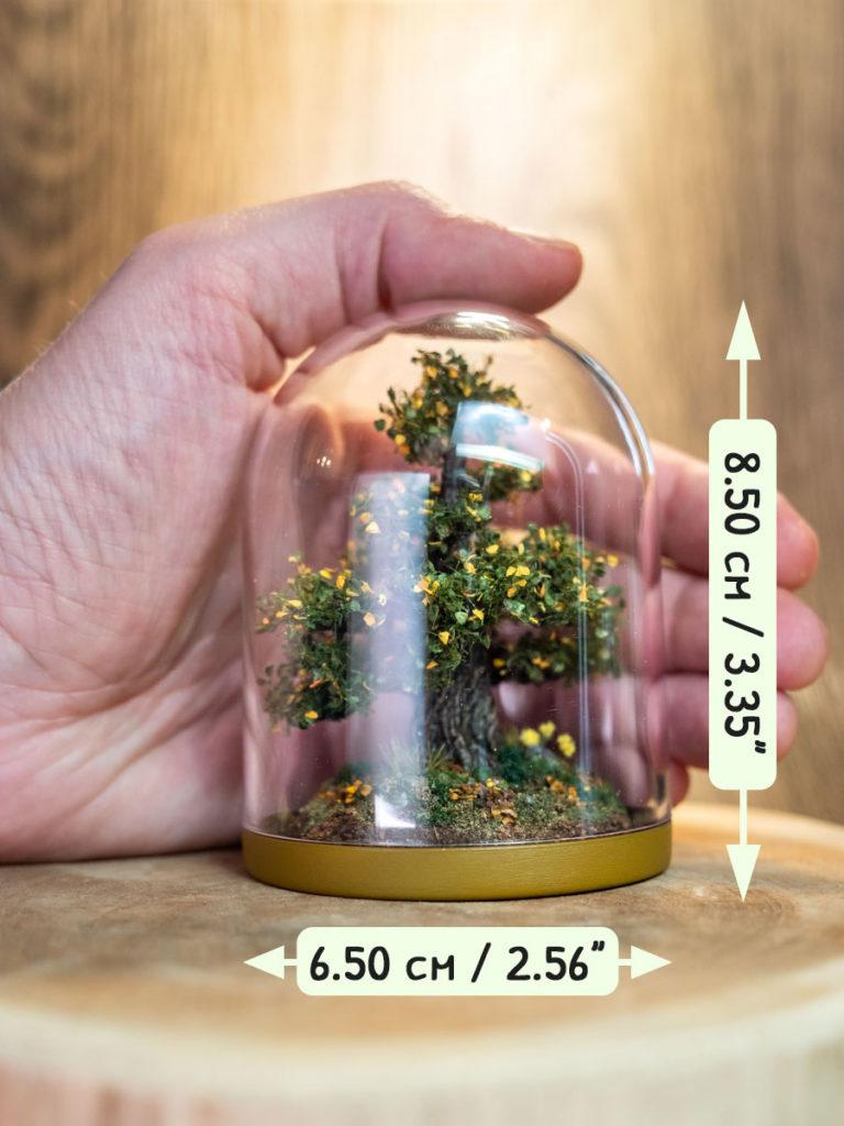 Arbre miniature / Miniature tree