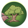Miniaturalia - The little sculpted trees
